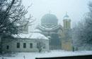 Детелина Тихолова - Зимна мъгливост