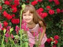 Ружа Велчева - Ето ме - сред розите!...