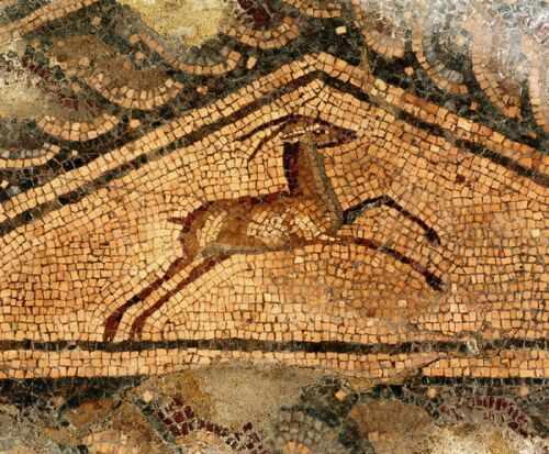 """Триъгълно пано с антилопа (детайл от мозайката """"Ганимед и орела"""") - opus vermiculatum, opus tesselatum"""